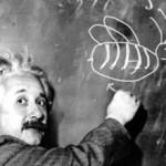 Einstein abeilles