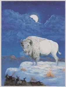 caroselli-m-bison-blanc