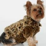 manteau-leopard-pour-chien