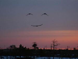 sourire d